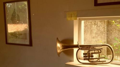 instrumento musical.jpg